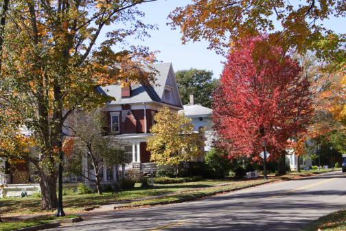 Main Street's magnificent foliage